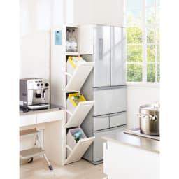 キッチンすき間収納 ダストボックス 2分別ペダル付き 本体にはマグネットを付けられます。 ※写真はトールタイプ3分別です。