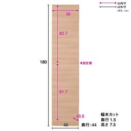 奥行44cm 生活感を隠すリビング壁面収納シリーズ 収納庫 扉タイプ 幅40cm