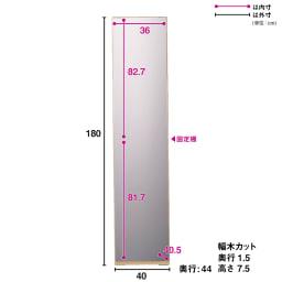 奥行44cm 生活感を隠すリビング壁面収納シリーズ 収納庫 ミラー扉タイプ 幅40cm