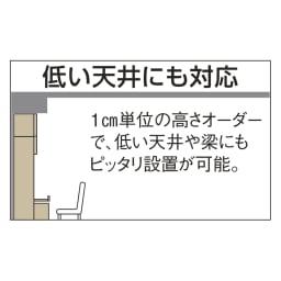 奥行44cm 生活感を隠すリビング壁面収納シリーズ 収納庫 段違い棚タイプ 幅80cm ※別売りのオーダー対応上置き使用時