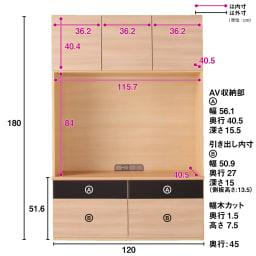 奥行44cm 生活感を隠すリビング壁面収納シリーズ テレビ台 ミドルタイプ 幅120cm