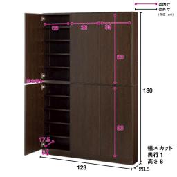 1cmピッチ薄型壁面書棚 奥行20.5cm 幅123cm 高さ180cm 扉