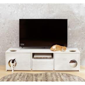 猫トイレを目隠しできる! ネコのくつろぎスペース付きテレビ台 幅180cm 写真