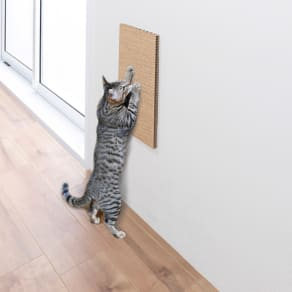 壁に貼れる猫の爪とぎシリーズ 麻タイプ(2枚組) 写真
