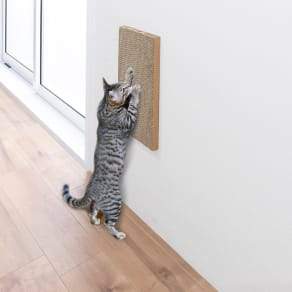 壁に貼れる猫の爪とぎシリーズ お試しセット各1枚 写真