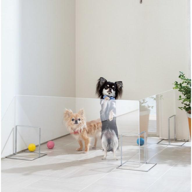 アクリル製ペットゲート 高さ40.5cm お得な2枚組(コーナー兼用) 小型犬向きの高さ40.5cmタイプ。
