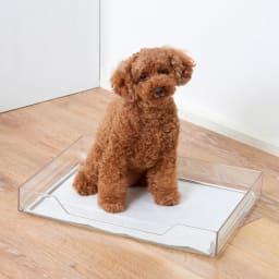 クリアトワレシリーズ ミニ 飛散ガードなし 【小型犬用・3kg未満】 前面はワンちゃんが出入りしやすい形状。