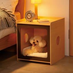 ペットと過ごす曲げ木サイドテーブル ワイド (イ)ブラウン 飼い主さんのベッドの横に置けば、寝るときもいっしょ。