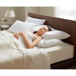 正方形判 (フォスフレイクス 安眠枕 お得な2個セット(枕のみ)) 写真