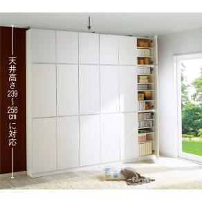 1cmピッチ薄型壁面書棚 奥行29.5cm 幅123cm 上置き高さ55cm 扉 写真