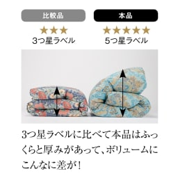 【dinos創業50周年スペシャルプライス】季節外れだから安い!フランス産5つ星羽毛布団