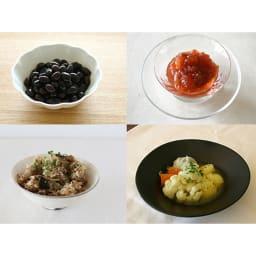 酵素玄米炊飯器 酵素玄米Labo 本体のみ パンの発酵、塩麹、醤油麹、ヨーグルトなど様々な発酵食品が作れます