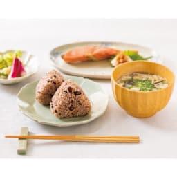 酵素玄米炊飯器 酵素玄米Labo 本体のみ