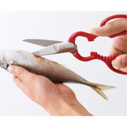 ツインクラシック 料理バサミ 「魚は大きいものを下処理するときほど、包丁よりもハサミのほうが便利なんですよ」