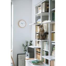 登って遊べるネコ用ステップ付き たっぷり収納本棚  幅116.5cm高さ180cm 棚板はすべて可動式なので、ネコが飽きたら並び方を変えることもできます。