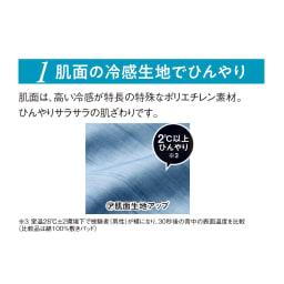 ひんやり除湿寝具デオアイスエアドライシリーズ ピローパッド(同色2枚組)普通判