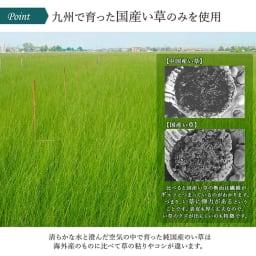 い草のマット〈畳ヨガ〉SKYSEA