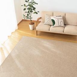 6畳(色が選べる機能充実カーペット) (ウ)ブラウン
