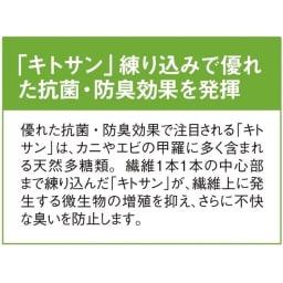 洗える抗菌防臭加工モケット織マット「ポーロ」 だ円約60×90cm