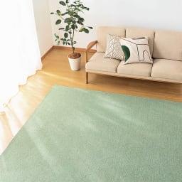 色が選べる機能充実カーペット 3畳~10畳 【四角カット フリーカットサービス】 (キ)グリーン