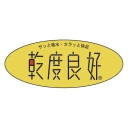 PLYS(プリス)ソフィ「乾度良好(R)」トイレタリー トイレマット単品