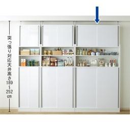 狭いキッチンでも置ける!薄型引き戸パントリー収納庫 奥行30cmタイプ 幅120cm 扉を閉めればスッキリの壁面収納家具です。 突っ張り対応天井高さ189~252cm