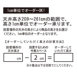 A4サイズがぴったり収まる高さサイズオーダー対応壁面収納ラック 奥行29.5cmタイプ 幅60本体高さ207~259cm(対応天井高さ208~260cm) 1cm単位でオーダーOK!