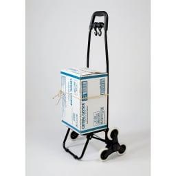 段差も越えられる3輪ショッピングカート バッグは取り外し可能。カートのみでもご使用いただけます。 ※使用イメージ