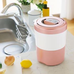 生ごみ減量乾燥機 パリパリキューブライトアルファ 脱臭フィルター2個セット 写真