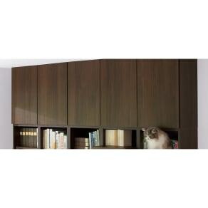 高さサイズオーダー対応 ネコ用ステップ付き本棚 上置き 幅116.5cm高さ26~90cm 写真