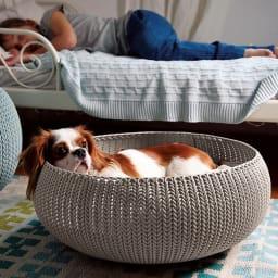 カーバー ペットベッド 思わず入りたくなるふかふかクッションのベッド。