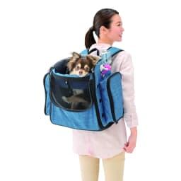 ペット用キャスター付きキャリーバッグ