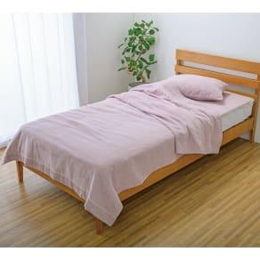 今治製タオルの寝具シリーズ ピローケース 染色 普通判(1枚) 写真