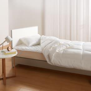 2段ベッド用 (ミクロガード(R)プレミアム布団シリーズ 洗える2枚合わせ掛け布団) 写真
