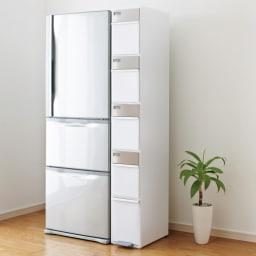 分別スウィングステーション(ダストボックス) 5段・タワータイプ 省スペースで多分別のダストボックス。冷蔵庫の横のスペースをエコスペースにしてみてはいかがですか?