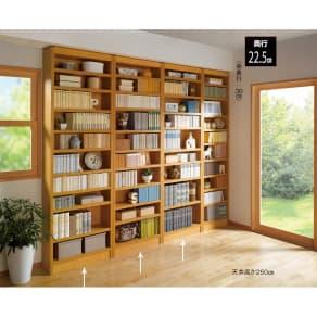天井突っ張り式がっちりすっきり壁面本棚 奥行22.5cmタイプ 1cm単位高さオーダー 幅70cm・高さ207~259cm 写真