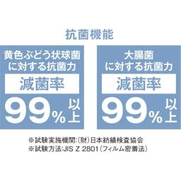 【サイズオーダー】銀イオン配合 軽量・抗菌折りたたみ式風呂フタ 奥行80cm(シルバー)