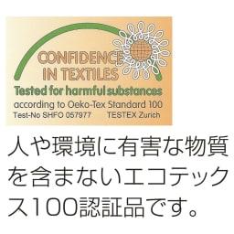普通判 (フォスフレイクス 安眠枕 枕のみ)