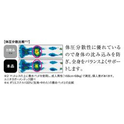 【旭化成アドバンス×dinos共同開発】ファミリー布団用 シルキーエアロクッションパッド(パッドシーツ) ファミリーサイズ・家族用