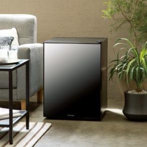 スタイリッシュ ミラーガラス冷蔵庫 容量40L 写真