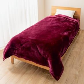 シングル(【テイジン】洗えるあったかボリューム毛布掛け毛布) 写真