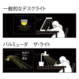 BALMUDA The Light / バルミューダ ザ ライト