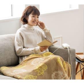 LISA LARSON/リサラーソン 電気毛布シリーズ 電気ひざ掛け 写真
