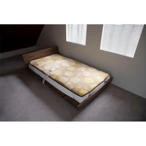 LISA LARSON/リサラーソン 電気毛布シリーズ 電気敷き毛布 写真