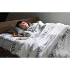 LISA LARSON/リサラーソン 電気毛布シリーズ 電気掛け敷き毛布