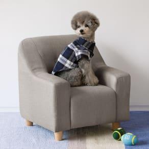 ペットのソファ 小 写真