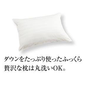 大判(洗える消臭羽毛シリーズ ダウン枕) 写真