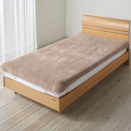 癒しの羊毛【メリノン】 ふかふか毛布シリーズ お得な掛け敷きセット 敷き毛布…(イ)ベージュ