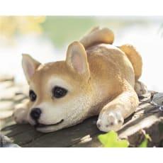 ふせ犬オーナメント 柴犬
