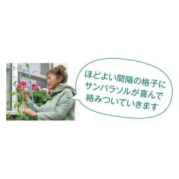 <吉谷桂子さんカラーセレクト商品>アイアンフラワーカーテン 1枚